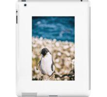 Sleepy Penguin - Falkland Islands iPad Case/Skin