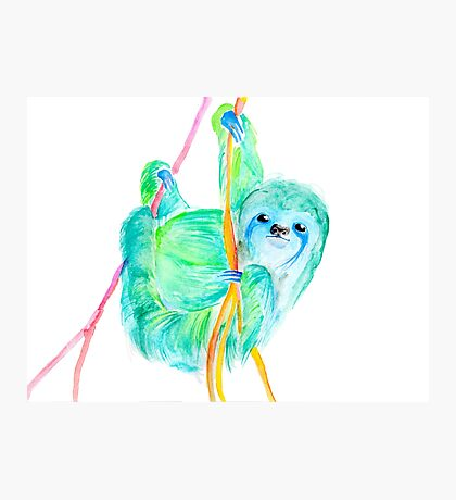 Dream Sloth Photographic Print