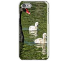 Pen with three cygnets (Mama Swan with kids) (2) iPhone Case/Skin