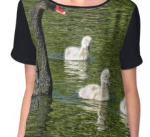 Pen with three cygnets (Mama Swan with kids) (2) Chiffon Top