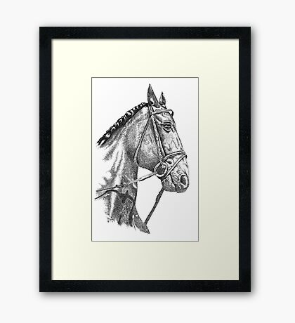 Fine line, hand drawn, Horse in Bridle Framed Print