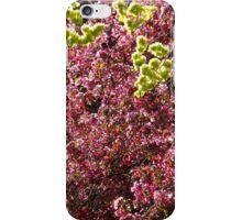 Plum and Maple iPhone Case/Skin