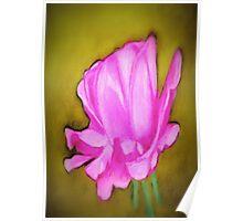 pretty pink flower Poster