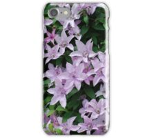 Purple Clematis blooms green leaves iPhone Case/Skin