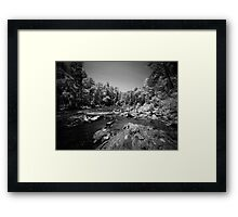 In the Rapids Framed Print
