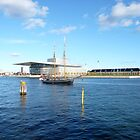 Port of Copenhagen by HeklaHekla