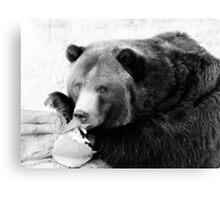 Beary Cute Canvas Print