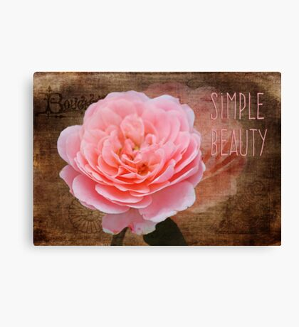 Simple Beauty in Pink Canvas Print