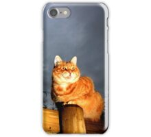 Scary cat iPhone Case/Skin