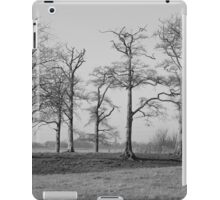 Stillness.. iPad Case/Skin