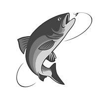 fly fishing salmon Photographic Print