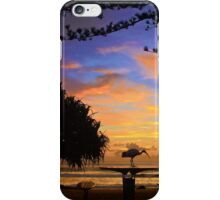 Australian Wetlands iPhone Case/Skin