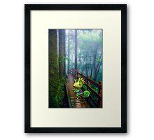 Kecleon Framed Print