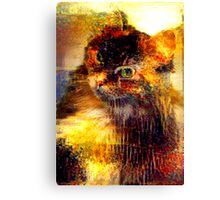Copper Kitty Canvas Print