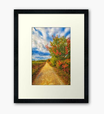 Step back into fall Framed Print