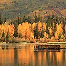 Autumn Calm Throw Pillow & Tote Bag by Gene Praag