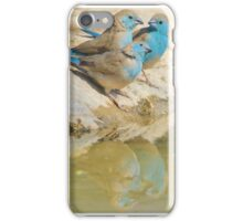 Blue Waxbill - Colorful Wild Birds from Africa - Brotherhood of Joy iPhone Case/Skin