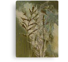 Nature's random Canvas Print