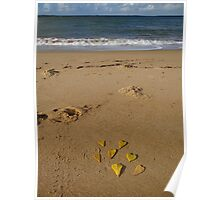 Leaves of love - on the beach Poster