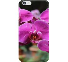 Orchids from Washington DC iPhone Case/Skin