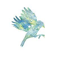Starry Starry Flight Print Photographic Print