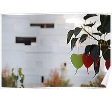Wishing Tree/Praying Tree Poster