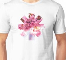 Red Hot Chili Peppers Pink Flowers Unisex T-Shirt