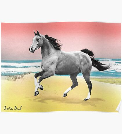 Beach Horse Justin Beck Picture 2015081 Poster