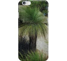 Native Grass Tree iPhone Case/Skin