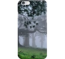 Foggy Wynstay - Mt Wilson NSW Australia iPhone Case/Skin