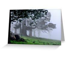 Foggy Wynstay - Mt Wilson NSW Australia Greeting Card