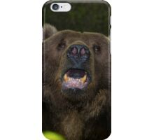 Black Bear iPhone Case/Skin