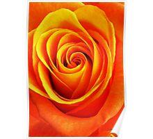 Vibrant Orange Poster