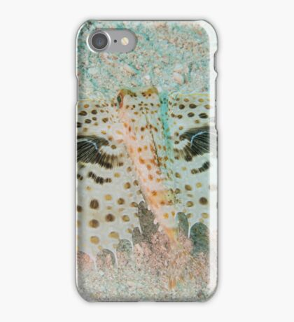 Flying Gurnard iPhone Case/Skin