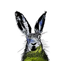 HARE BLACK T SHIRT Photographic Print