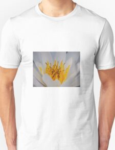 Water lily close up Unisex T-Shirt