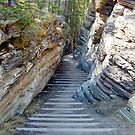 Athabasca Falls Steps by AnnDixon