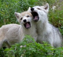 Howling good time - Arctic wolf pups Sticker