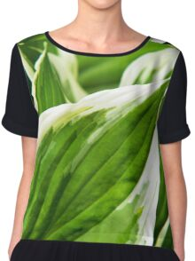Green Leaves Abstract Chiffon Top