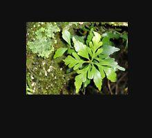 Celery -Top Pine and Lichen, Cradle Mountain,Tasmania, Australia. Unisex T-Shirt