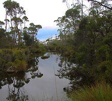 Mount Field National Park - Tasmania by GHeathcote