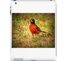 Robin Red Breast iPad Case/Skin