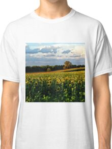 Summer sunflower field Classic T-Shirt