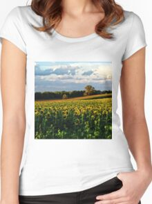 Summer sunflower field Women's Fitted Scoop T-Shirt
