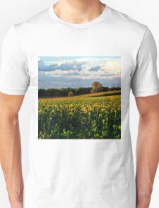 Summer sunflower field Unisex T-Shirt