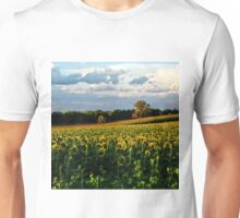 Summer sunflower field Unisex T-Shirt
