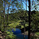 Tallebudgera Valley by Noel Elliot