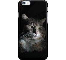 Portrait of tabby cat with black background iPhone Case/Skin