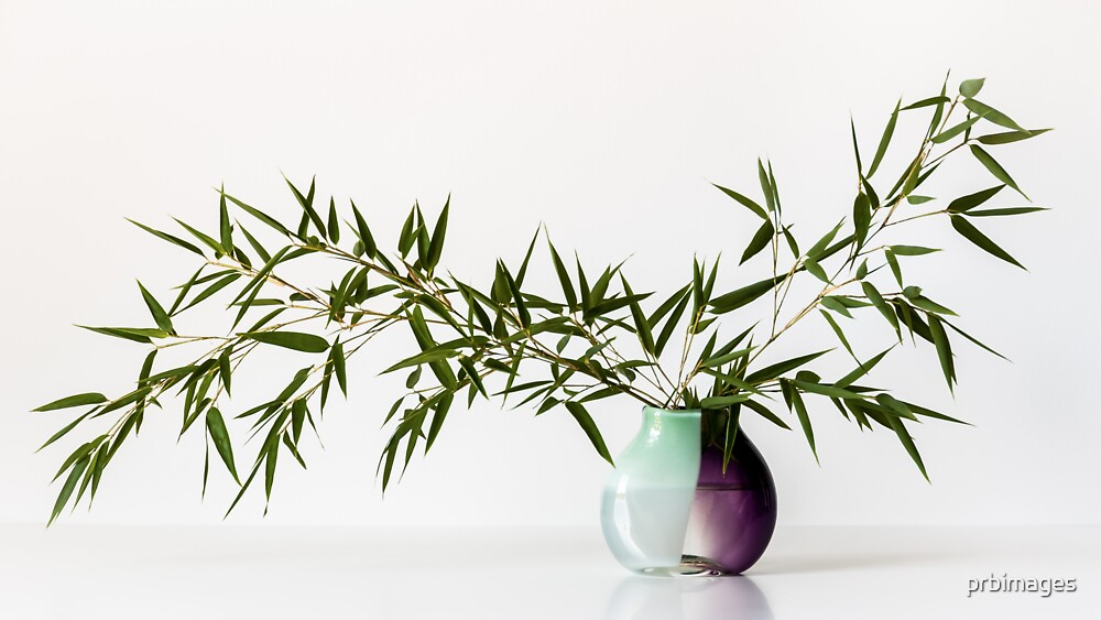 Vase With Bamboo by prbimages