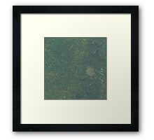 Green Grunge Framed Print
